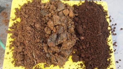 Dry soil samples