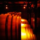 Barrel Tasting at White Rose