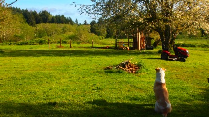 Wilbur respecting boundaries.