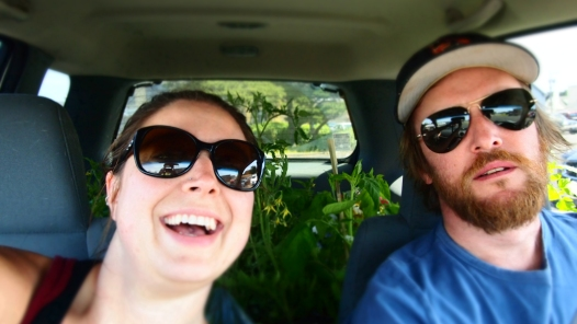 Homeward with our new plants.